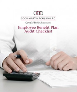 plan audit checklist_pages